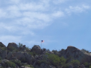 The 10th flag on the 241