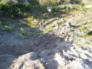 Fresh Tracks at Cap Rock