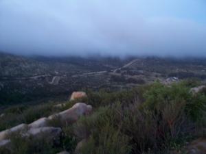 Fast moving fog bank 5APR08