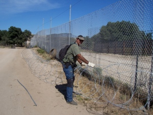 Untangling razor wire on private property