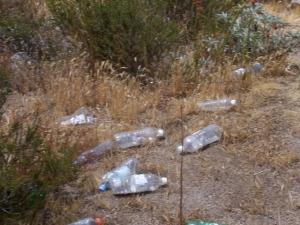 241 trash