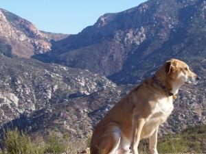 Hot Shot and Hauser Canyon