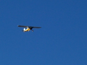Green Hornet air patrol