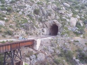 Tunnel never fails to amaze me-unguarded POE