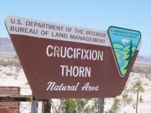 Crucifixion Thorn BLM