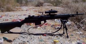 M1A w/Tasco Pro Point and bipod