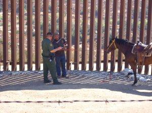 Agent interviews horseman