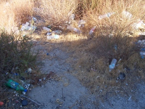Travelers trash on the south side