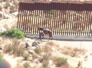 Mexican Horseman