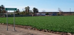 Gadsen, AZ with new fence in background