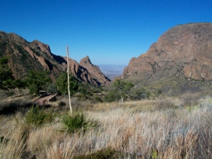 Chisos Basin- The Window