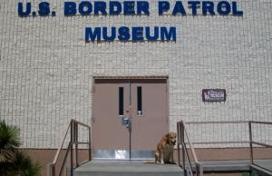 BP museum