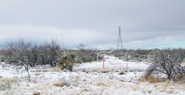 Tucson in February