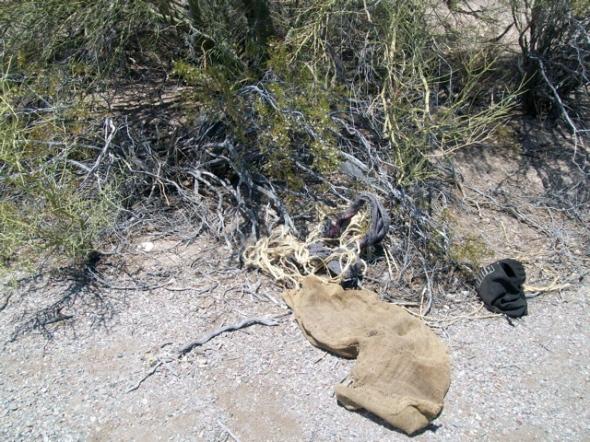 Fresher drug load debris 1