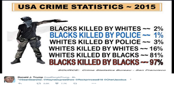 US Crime Statistics 2015