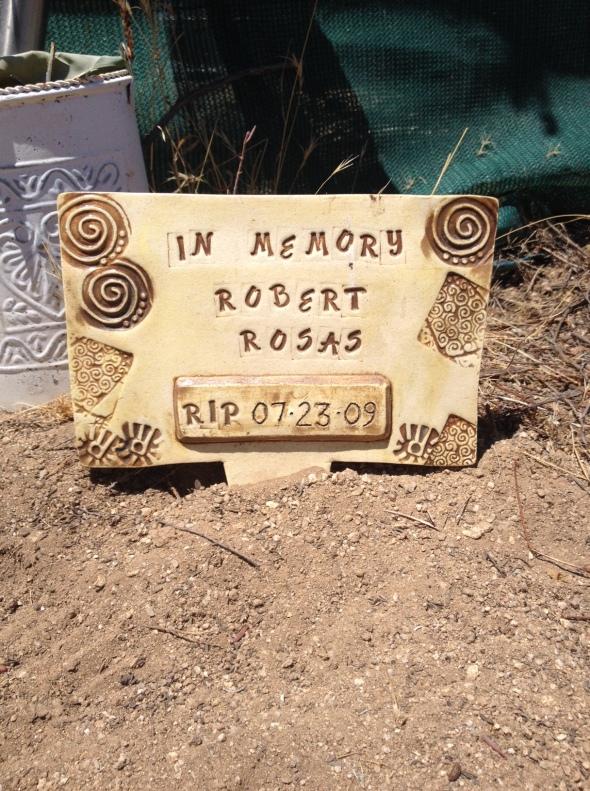 Rosas RIP 2016